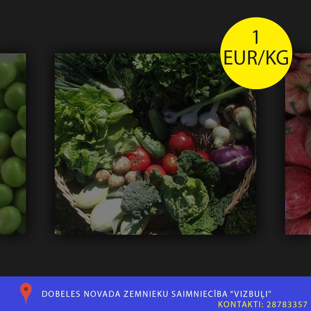 Saimnieciba_Vizbuli
